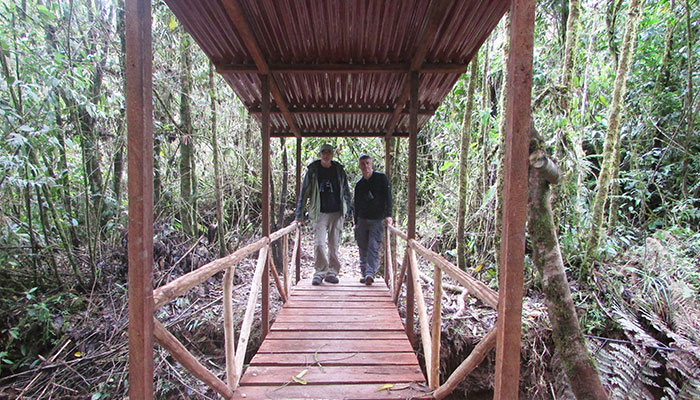 turist across bridge in owlet trails